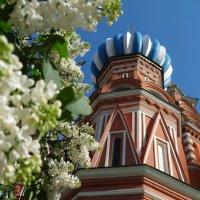 московская Весна :: Валентина. .