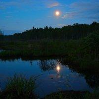 Полнолуние над лесной речкой. :: Belka Beshen