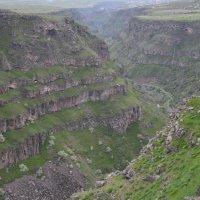 Армения, ущелье около монастыря Сагмосаванк :: Надежда Водорезова