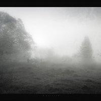человек из тумана :: Павел Корнеев