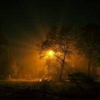 туманной ночью :: Вадим Виловатый