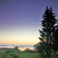 Тропинка к озеру :: Валерий Талашов