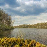Весна в Подмосковье :: Елена