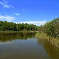 Сибирская река. :: Мила Бовкун