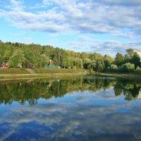 Мой любимый пруд.Бегут по небу облака :: Лидия (naum.lidiya)