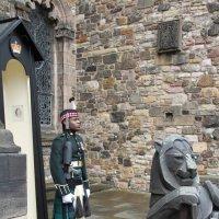 Килт (англ. Kilt) — предмет мужской шотландской национальной одежды. :: Антонина
