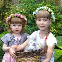 сестрички ) :: Райская птица Бородина