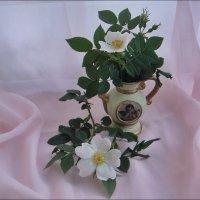 Нежные цветы шиповника :: Нина Корешкова