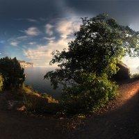 Весенние тропы окрестностей Балаклавы :: viton