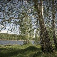 озеро Светленькое :: Pavel Kravchenko