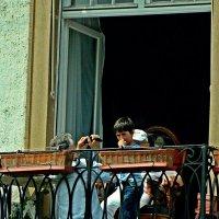 заглянув в чужие окна :: Александр Корчемный