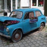 Экологически чистый транспорт :: Сергей Цветков