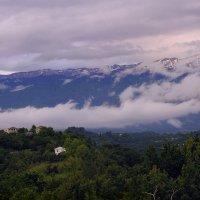 Вечер в Абхазии :: Лариса Савченко
