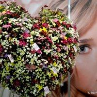 цветы от самого сердца :: Олег Лукьянов