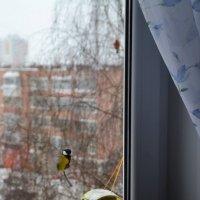 Занято!!!! мест нет!!! :: Алексей Могилёв