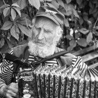 Гармонист :: Александр Степовой