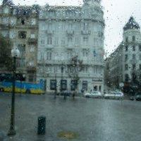 Слезы осеннего дождя :: Alex Molodetsky