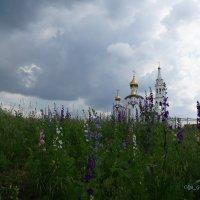 кажется дождь начинается... :: Olga Grebennikova
