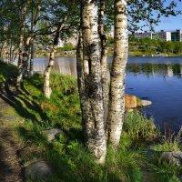 Над Мурманском отличная погода! :: kolin marsh