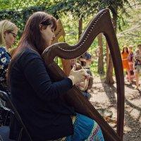 Концерт ирландской музыки. :: Наталия Тугаринова