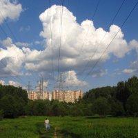 Под высоким напряжением :: Андрей Лукьянов