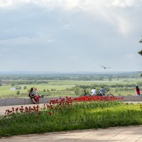 Место для спокойного отдыха :: Леонид Никитин