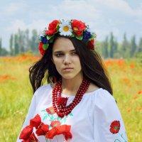 Украина в маках :: Olga Volkova
