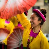 Вьетнамский танец :: Елена Селина