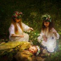 мои сказки... :: Светлана Мизик