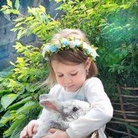 общение и знакомство ) :: Райская птица Бородина