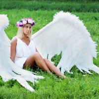 С небес на землю... :: Лина Трофимова