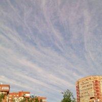 Небо над городом нашим! :: Ольга Кривых