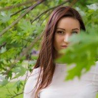 Краски Весны :: Александр Кабанов