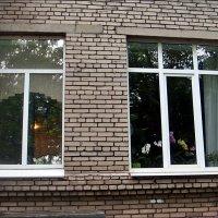 Школьные окна сегодня :: Нина Корешкова