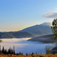 Туман и солнце - чудесный будет день :: Сергей Чиняев