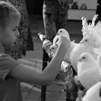 Девочка  и голуби :: Анастасия Смирнова