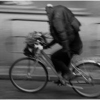 Дождливый велосипедист. :: Игорь Абламейко