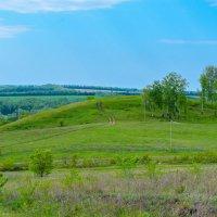 Дорога на холм :: Сергей Тагиров