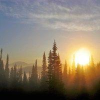Солнце восходит :: Сергей Чиняев