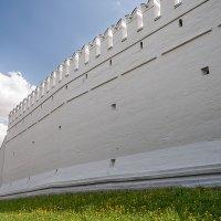 Монастырская стена :: Михаил Кондратенко