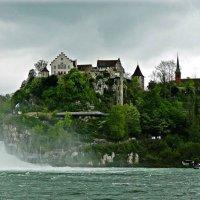 замок  Лауфен (Schloss Laufen) :: Александр Корчемный