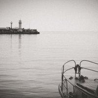 Утро в море :: Александр Колесников