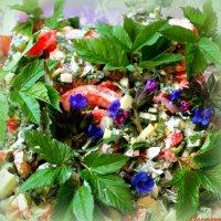 Весенний салат со снытью и медуницей :: Андрей Заломленков