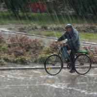Внезапный дождь :: Юрий Ричка