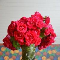 Букет роз :: Dana