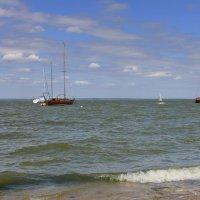 Порт в Таганроге :: оксана косатенко