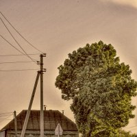 домик у дороги :: павел бритшев