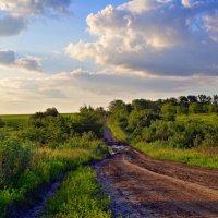 Пейзаж с дорогой. :: владимир