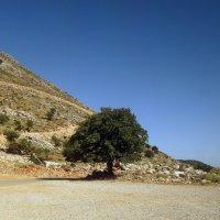 Горный Крит. :: Чария Зоя