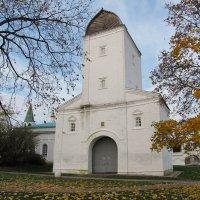 Водовзводная башня в Коломенском :: Николай Дони